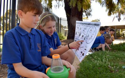 Teaching and Learning Update Friday 10 September 2021