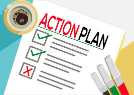 Rapid Action Plan